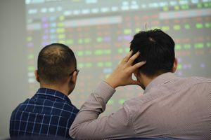 Nhà đầu tư chứng khoán 'khóc' với nhiều mã tên tuổi một thời