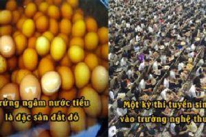 18 điều kỳ lạ chứng minh Trung Quốc đến từ thế giới khác, trứng ngâm nước tiểu là đặc sản đắt tiền