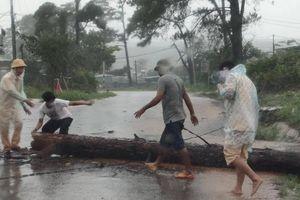 Hình ảnh đẹp CSGT Đắk Nông giúp dân xử lý cây đổ trong mưa lớn
