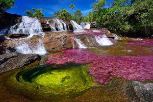 Sửng sốt trước vẻ đẹp 'thôi miên' du khách của dòng sông ngũ sắc ở Colombia