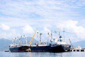Thống nhất chủ trương nâng cấp cảng Ba Ngòi