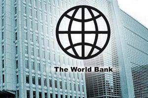 Tham gia dự án vay vốn Ngân hàng Thế giới