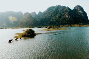 Địa danh Việt Nam từng lên phim Kong