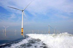 Cà Mau: Cần tuyển 84 lao động có tay nghề làm dự án điện gió