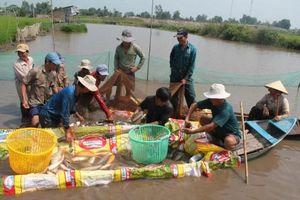 Phát huy tiềm năng thúc đẩy nuôi trồng thủy sản