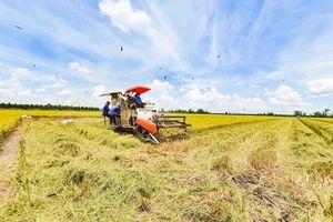 Ðề xuất phát triển sản xuất nông nghiệp chất lượng cao ở huyện Vĩnh Thạnh