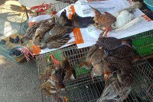 Gần 90% người Việt Nam ủng hộ đóng cửa các chợ bán động vật hoang dã