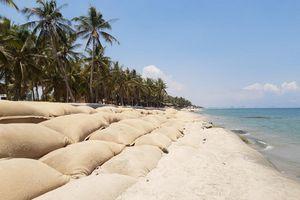Quảng Nam cho phép tắm biển và một số hoạt động trở lại sau thời gian tạm dừng