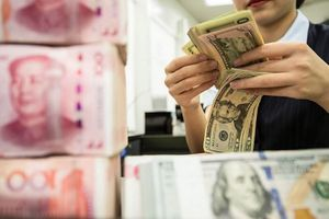 Tỷ giá USD hôm nay 25/5: USD neo ở mức thấp