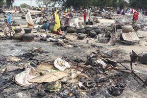 Nigeria kêu gọi cộng đồng quốc tế hỗ trợ khôi phục hòa bình tại khu vực hồ Chad
