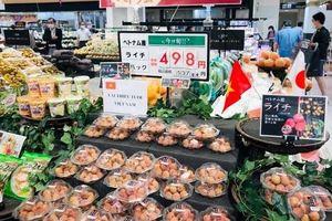Triển vọng xuất khẩu khoảng 1.000 tấn vải thiều tươi sang Nhật Bản