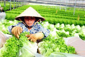 Tạo thuận lợi lưu thông, hỗ trợ tiêu thụ nông sản tại thị trường trong nước