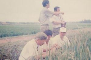 Chuyện Bộ trưởng Nguyễn Công Tạn đưa lúa lai về Việt Nam