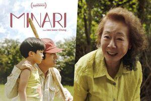 Những bộ phim và diễn viên Hàn Quốc 'làm mưa làm gió' ở Hollywood