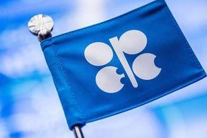 Tôn trọng hạn ngạch sản xuất: OPEC muốn kỷ luật quân đội!