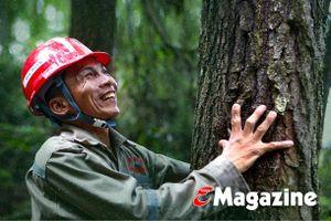 Thức cùng những cánh rừng giữa mùa nắng nóng ở Hà Tĩnh