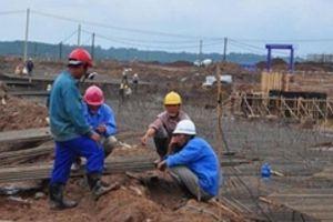 Phát hiện 84 lao động Trung Quốc không phép tại dự án điện gió ở Cà Mau