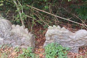 Rồng đá bị vùi trong đất