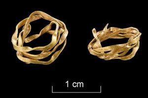 Vòng vàng bên trong ngôi mộ cổ 3.800 năm tuổi