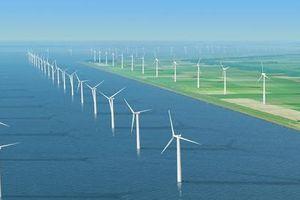 Sử dụng 84 lao động Trung Quốc không phép, dự án điện gió Viên An buộc dừng thi công