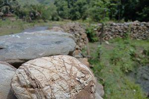 Độc đáo hàng rào đá bảo vệ ruộng ở miền Tây xứ Nghệ