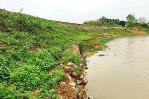 Sớm khắc phục sự cố sạt lở đê sông Cà Lồ