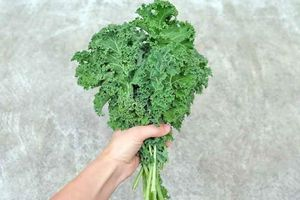 Tại sao cải Kale là nữ hoàng của các loại rau?