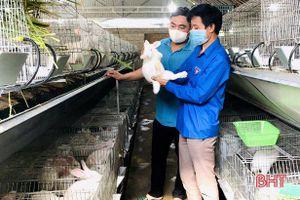 Mô hình nuôi thỏ của 9X Hà Tĩnh thu lãi từ 100 - 150 triệu đồng/năm