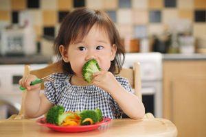 Bổ sung canxi cho trẻ từ các loại rau tự nhiên