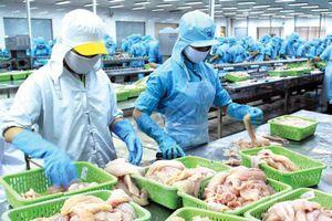 Đầu tư Việt Việt Nhật (VNH): Chủ tịch đăng ký mua 2 triệu cổ phiếu