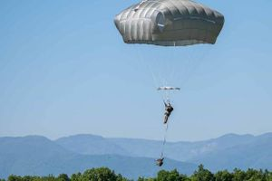 Lính Mỹ đột kích nhầm vào nhà máy dầu ô liu của Bulgaria
