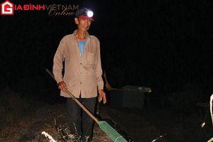 Một đêm theo thợ đi 'săn' cóc nhái