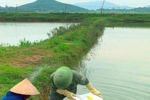 Bắc miền Trung Nuôi trồng thủy sản thiệt hại nặng do nắng nóng