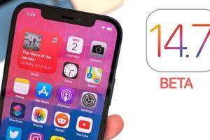 Bản cập nhật iOS 14.7 beta khiến iPhone bị lỗi SIM