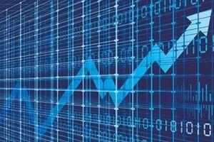 Ai đền bù thiệt hại cho nhà đầu tư?