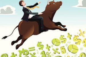 Hội chứng sợ bị bỏ lỡ (FOMO) kéo tiền vào thị trường như thác lũ
