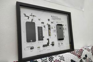 Trào lưu 'rã xác' iPhone làm tranh tiêu bản ở Việt Nam