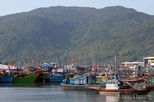 USAID hỗ trợ Đà Nẵng 13 tỷ đồng bảo vệ nguồn nước và giảm rác thải nhựa