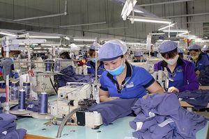 Quy định hàng hóa xuất, nhập khẩu tại chỗ có làm khó các doanh nghiệp gia công?
