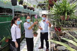 Nguồn vốn vay từ Ngân hàng Chính sách xã hội: Đòn bẩy giúp nông dân phát triển sản xuất