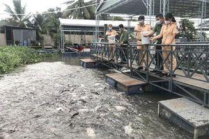 Góp phần giữ cá cho sông Hậu