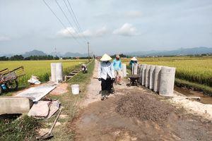 Quảng Ninh nâng tầm nông thôn mới