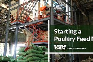 San Miguel sẽ xây 7 nhà máy thức ăn chăn nuôi mới ở Philippines