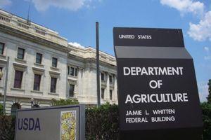Covid-19: Bộ Nông nghiệp Mỹ tài trợ 1 tỷ USD cho mạng lưới ngân hàng lương thực