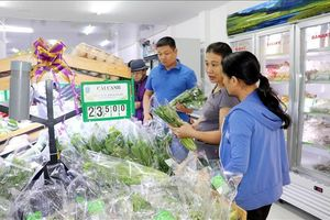 'Giấy thông hành' cho sản phẩm nông nghiệp sạch Nam Định