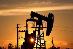 Biến động thị trường dầu tăng cao trong tuần đầu tháng 6