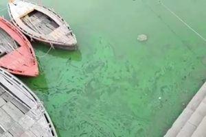 Sông Hằng chuyển màu xanh bất thường, dân Ấn Độ phát hoảng