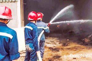 Mùa khô năm 2021: Gia tăng số vụ cháy