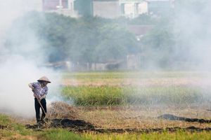 Dân đốt rơm rạ, không khí Hà Nội bị xếp hạng ô nhiễm nhất thế giới