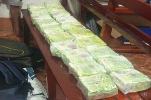 Thông tin mới vụ bắt 20 kg ma túy trong ba lô ở Đồng Nai